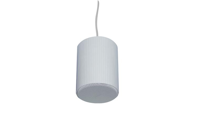 Pendant Speaker PSK-10A